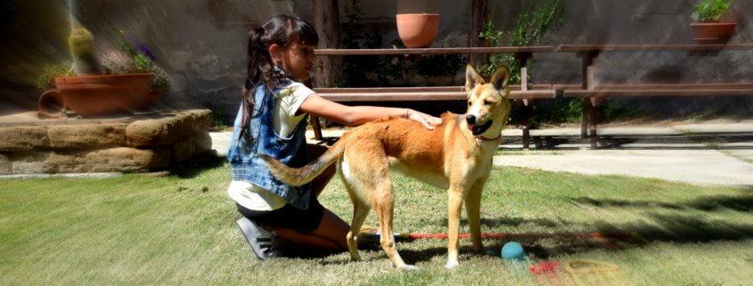 benefici animali bambini